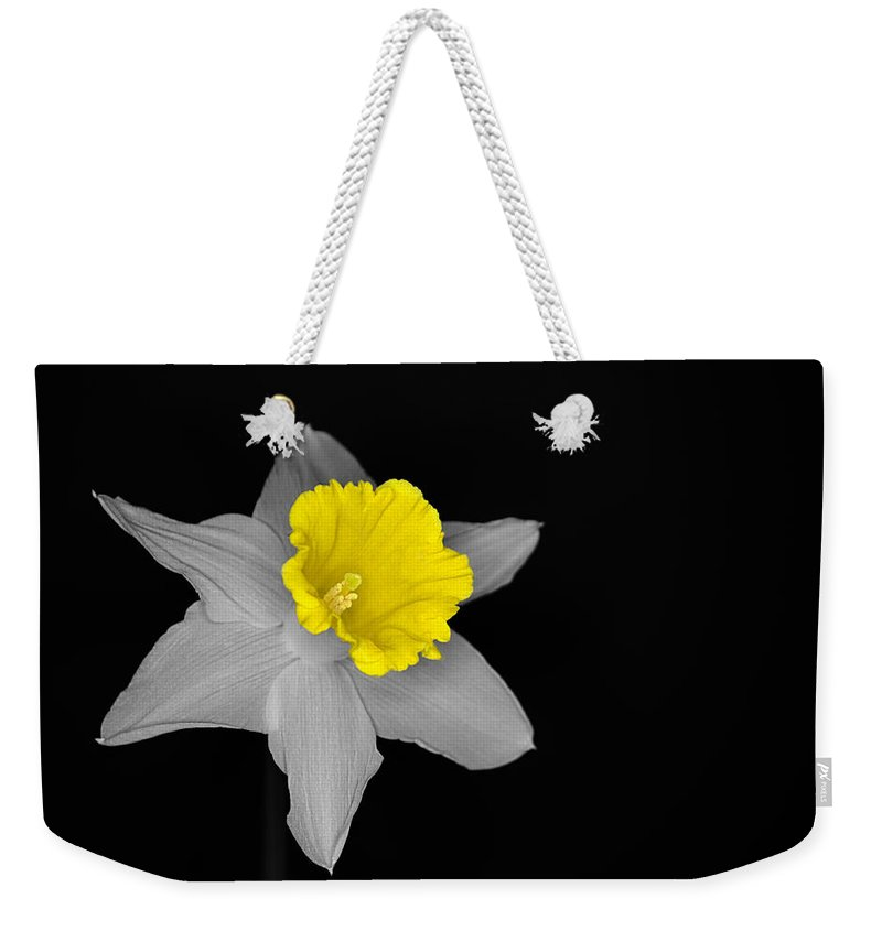 Daffodil Weekender Tote Bag featuring the photograph Daffo The Dilly Isolation by Chris Day