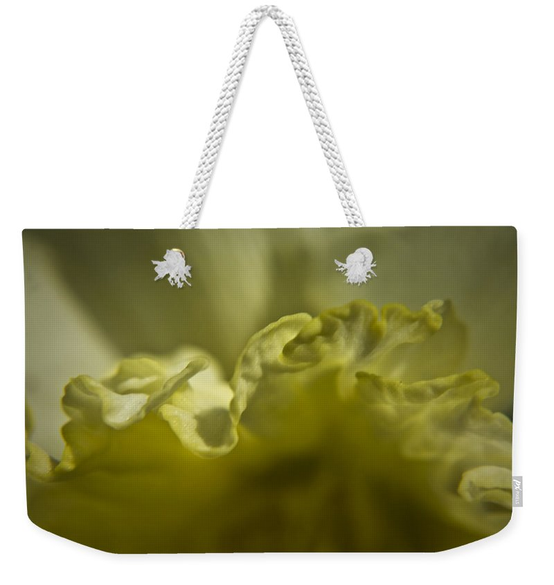 Flower Weekender Tote Bag featuring the photograph Daffodil Ruffles by Teresa Mucha