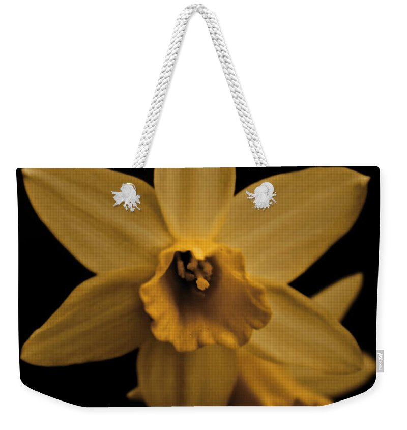 Flower Weekender Tote Bag featuring the photograph Daffodils by Danielle Silveira
