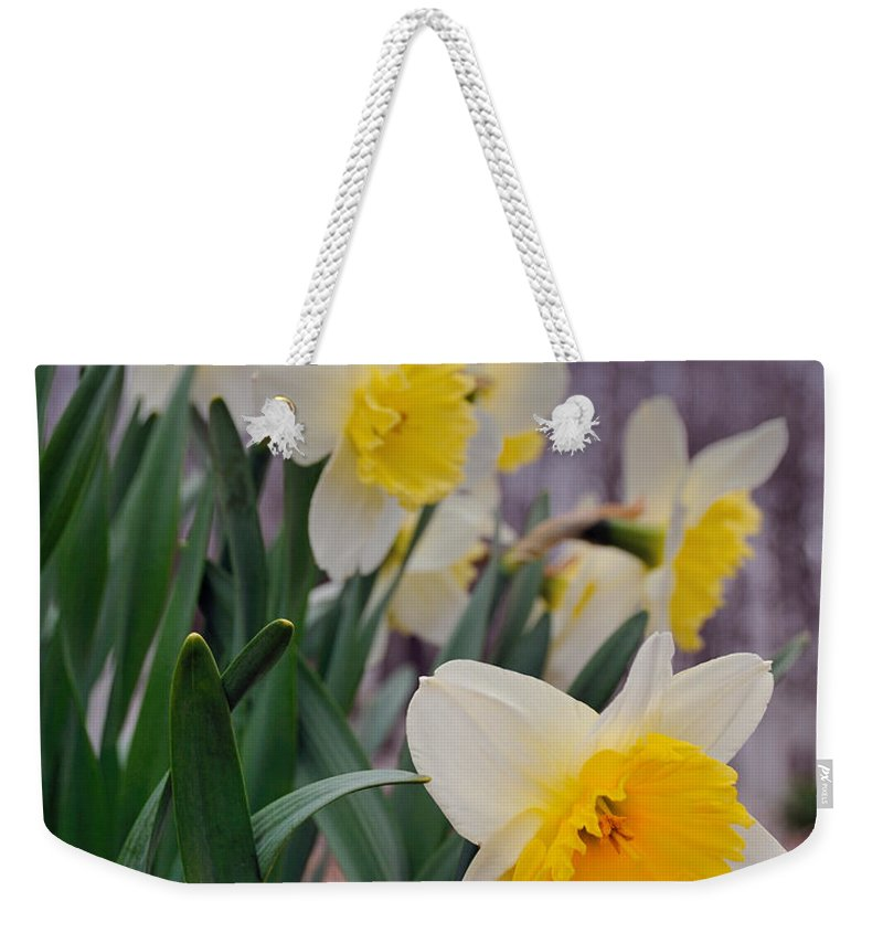 Flowers Weekender Tote Bag featuring the photograph Daffodils by David Arment