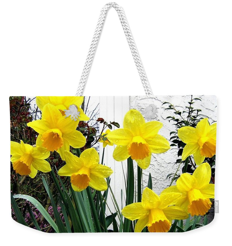 Daffodils Weekender Tote Bag featuring the photograph Daffodils by Will Borden