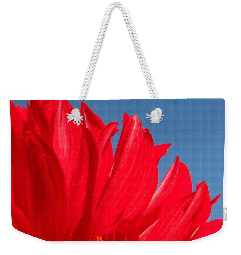 Dahlia Weekender Tote Bag featuring the photograph Dahlia by Amanda Barcon