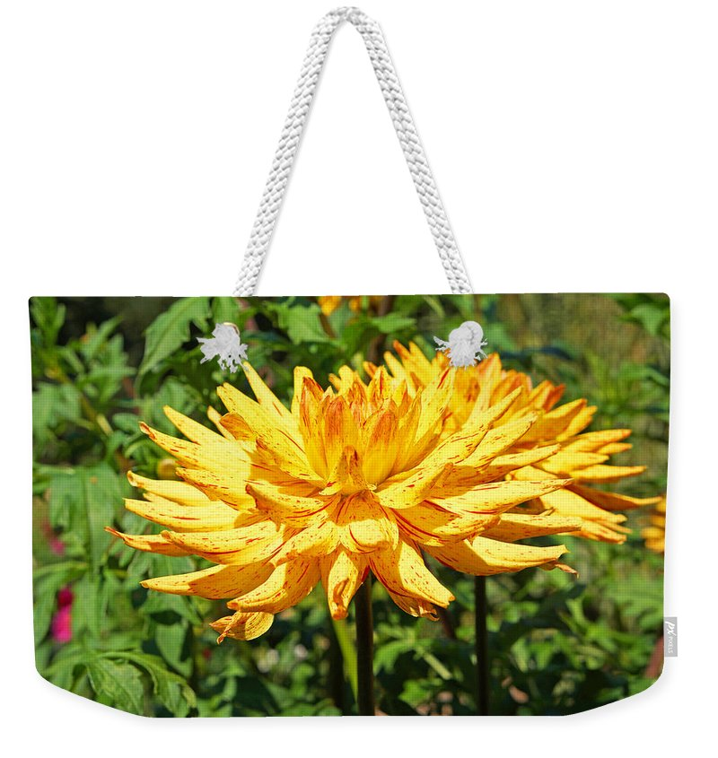 Green Weekender Tote Bag featuring the photograph Dahlia Flower Floral Art Prints by Patti Baslee