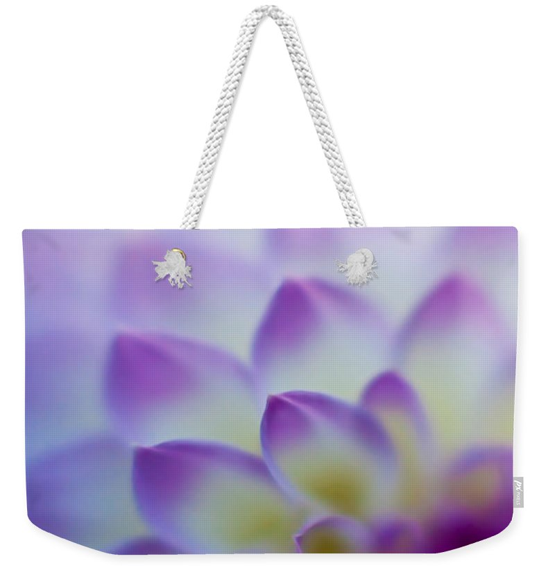 Dahlia Weekender Tote Bag featuring the photograph Dahlia Glow by Mike Reid
