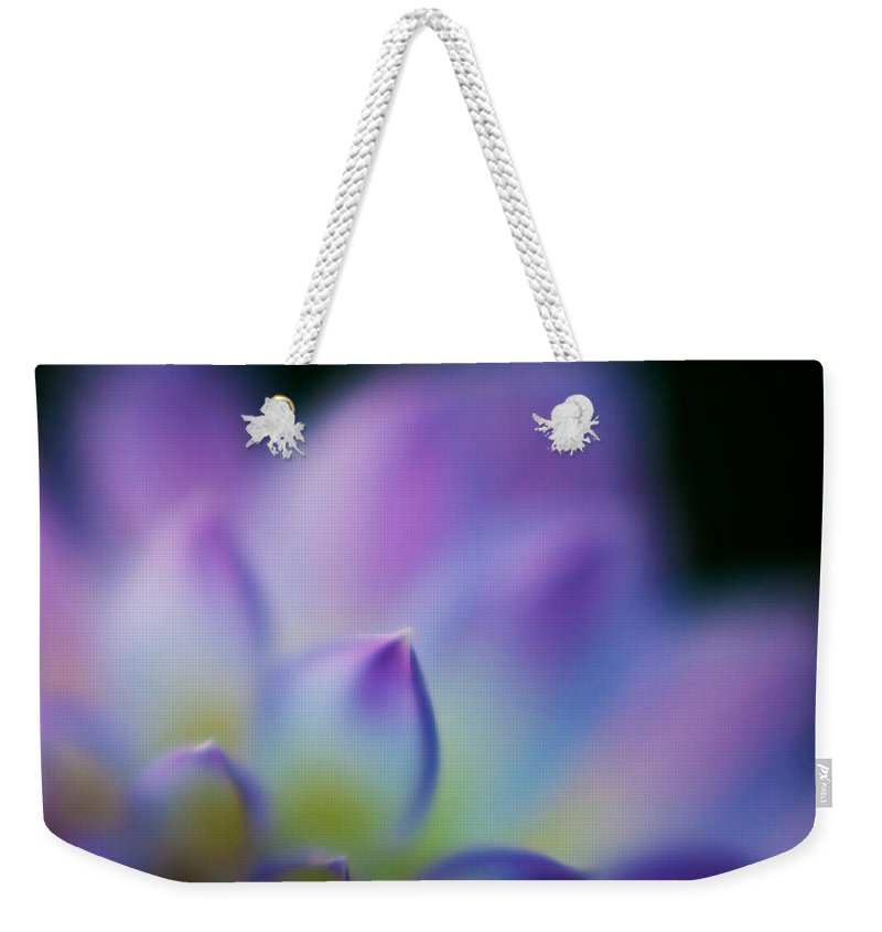Dahlia Weekender Tote Bag featuring the photograph Dahlia Heaven by Mike Reid