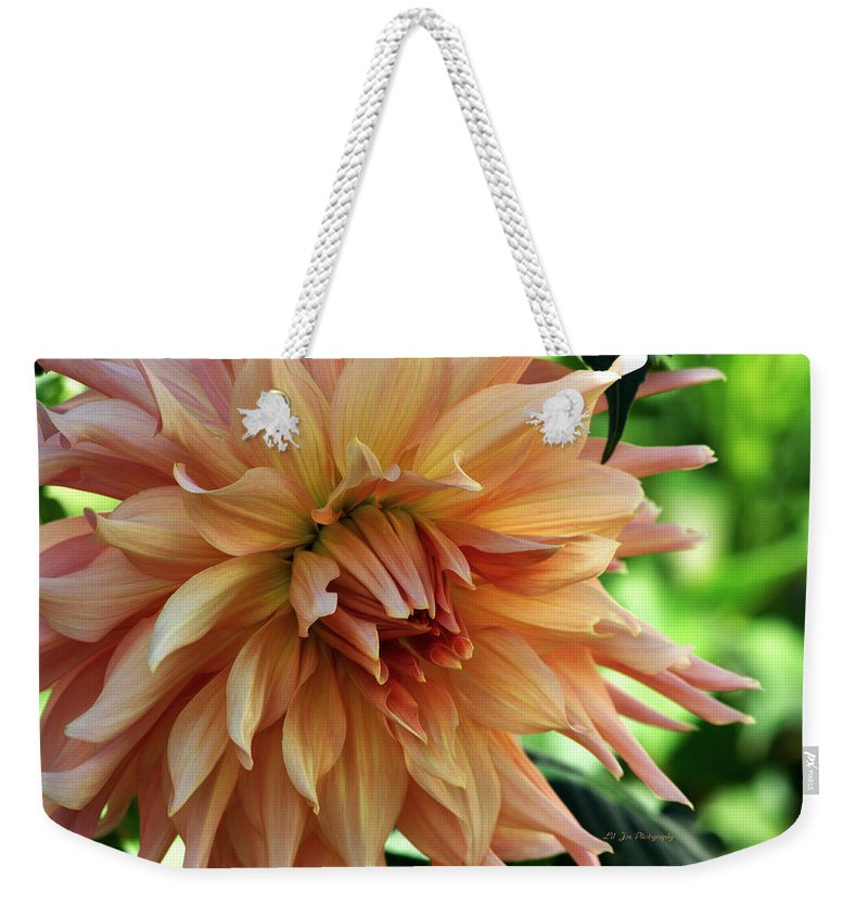 Dahlia Weekender Tote Bag featuring the photograph Dahlia In Bloom by Jeanette C Landstrom
