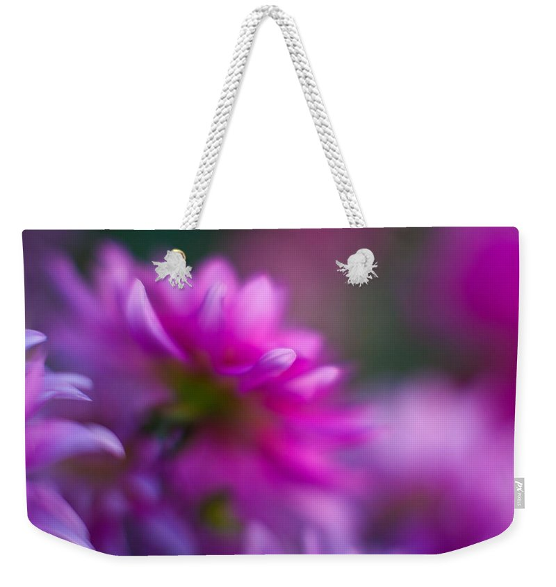 Dahlia Weekender Tote Bag featuring the photograph Dahlia Menagerie by Mike Reid