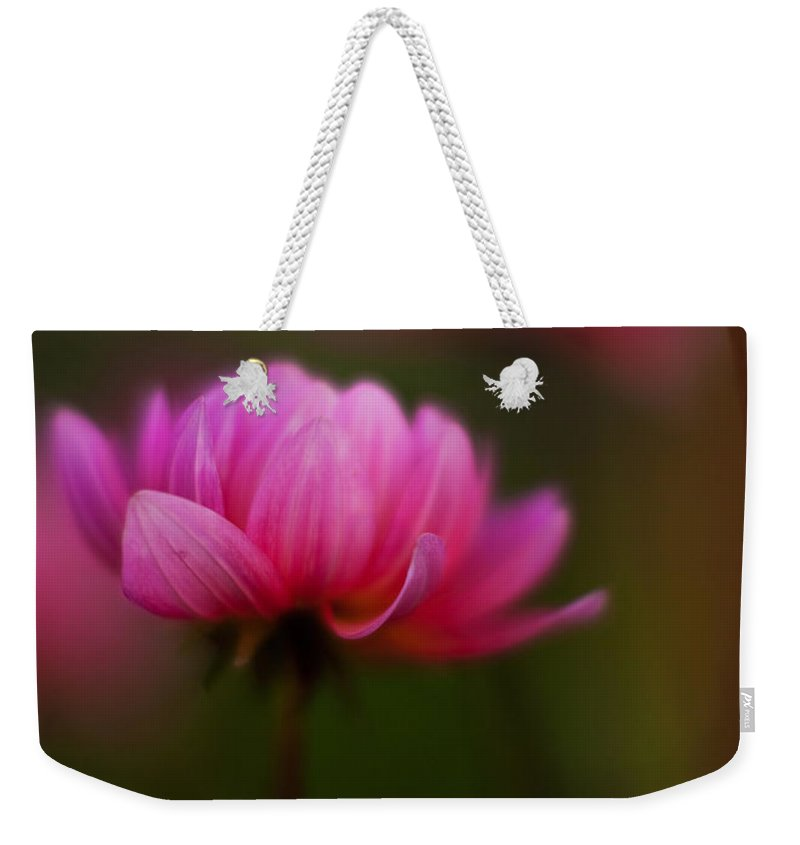 Dahlia Weekender Tote Bag featuring the photograph Dahlia Mood by Mike Reid