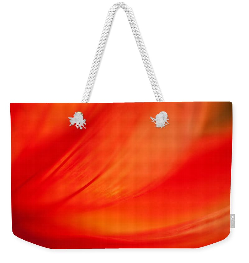 Dahlia Weekender Tote Bag featuring the photograph Dahlia On Fire by Mike Reid