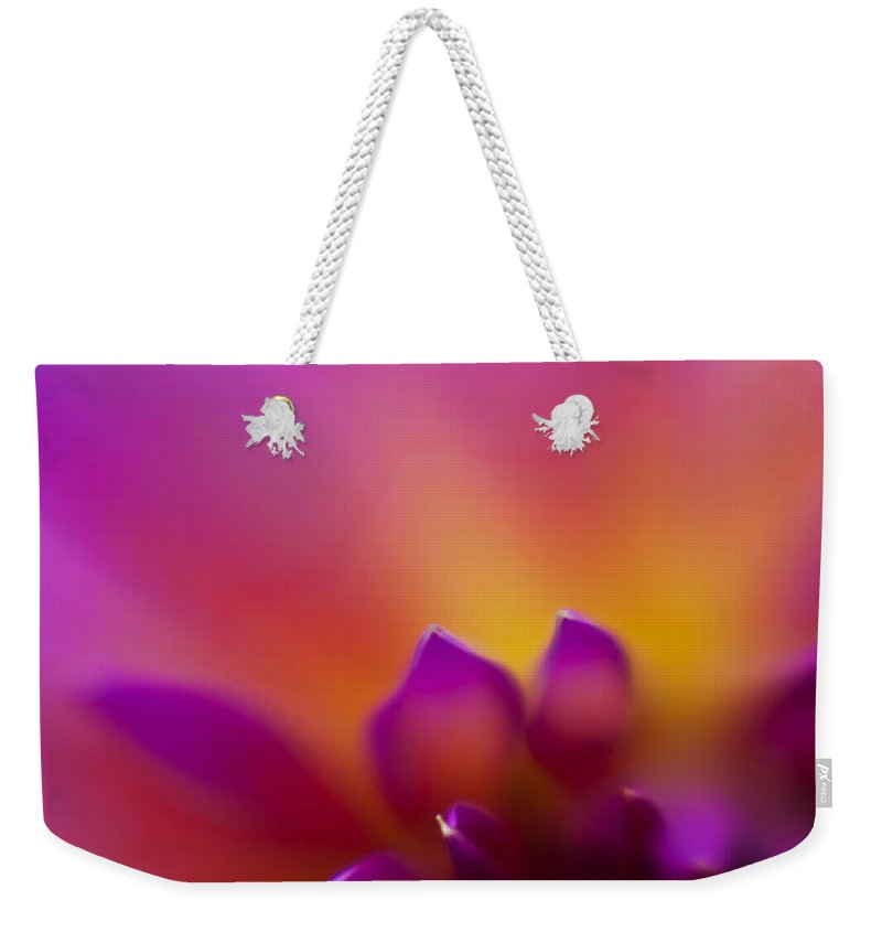 Dahlia Weekender Tote Bag featuring the photograph Dahlia Rainbow by Mike Reid