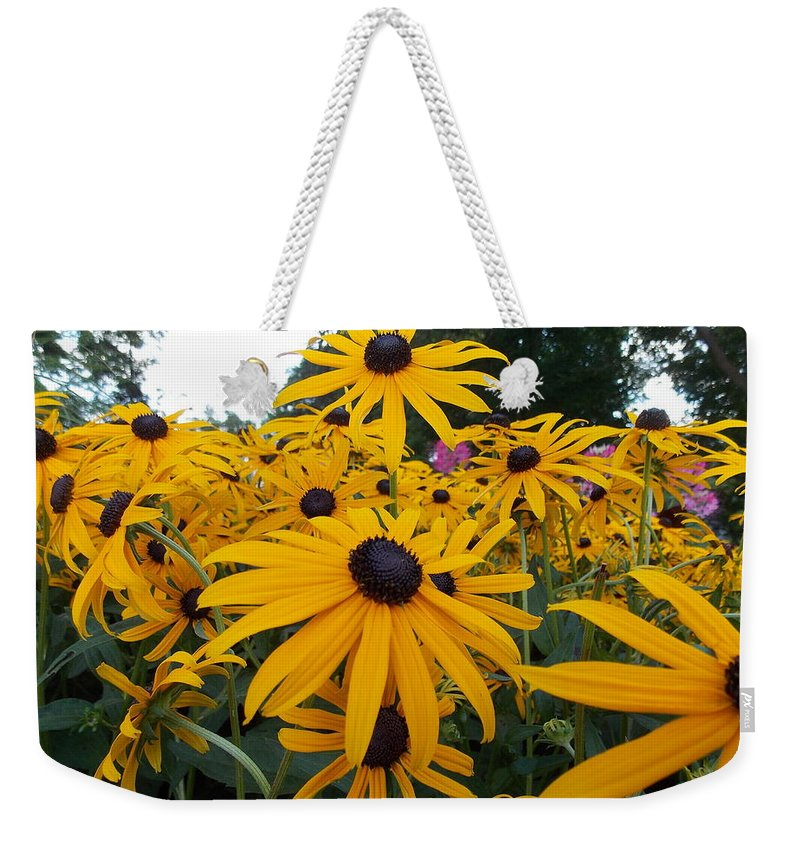 Daisies Weekender Tote Bag featuring the photograph Daisies From Niagara by Nina Kindred