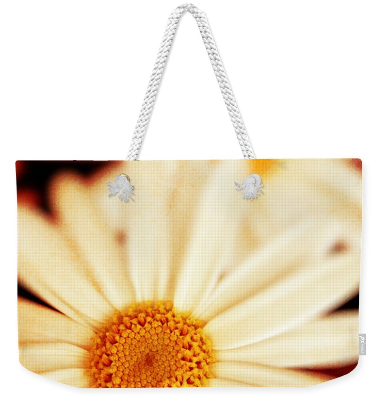 Close Up Weekender Tote Bag featuring the photograph Daisies by Silvia Ganora