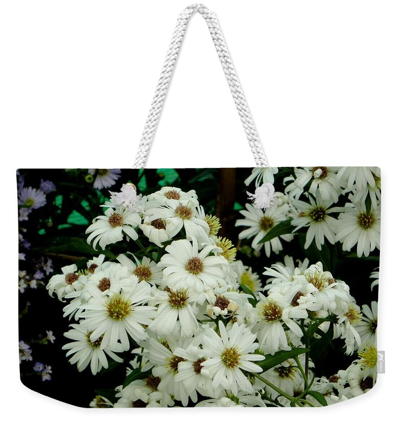 White Weekender Tote Bag featuring the photograph Daisies by Usha Shantharam