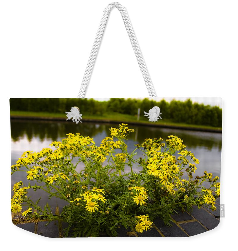 Beautiful Weekender Tote Bag featuring the photograph Daisy Daisy by Svetlana Sewell