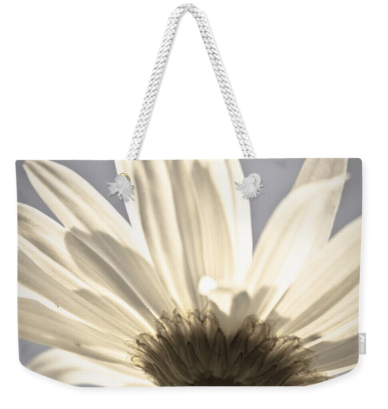Flower Weekender Tote Bag featuring the photograph Daisy by Danielle Silveira