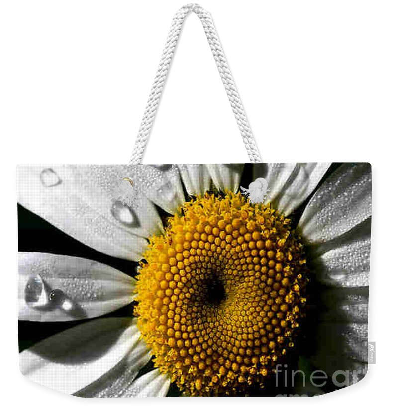 Daisy Weekender Tote Bag featuring the photograph Daisy by Dragica Micki Fortuna