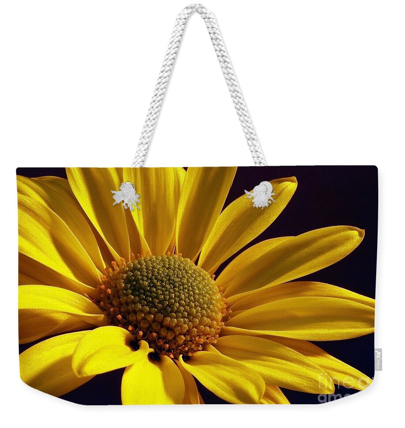 Flower Weekender Tote Bag featuring the photograph Daisy by Lois Bryan