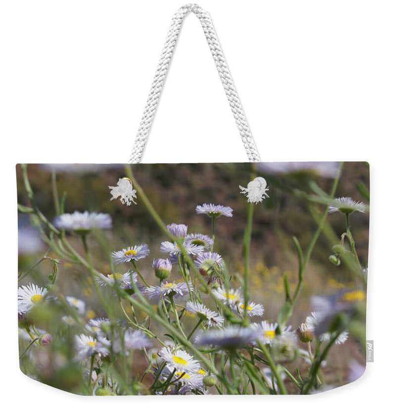 Daises Weekender Tote Bag featuring the photograph Daisy Magic by Heather Coen
