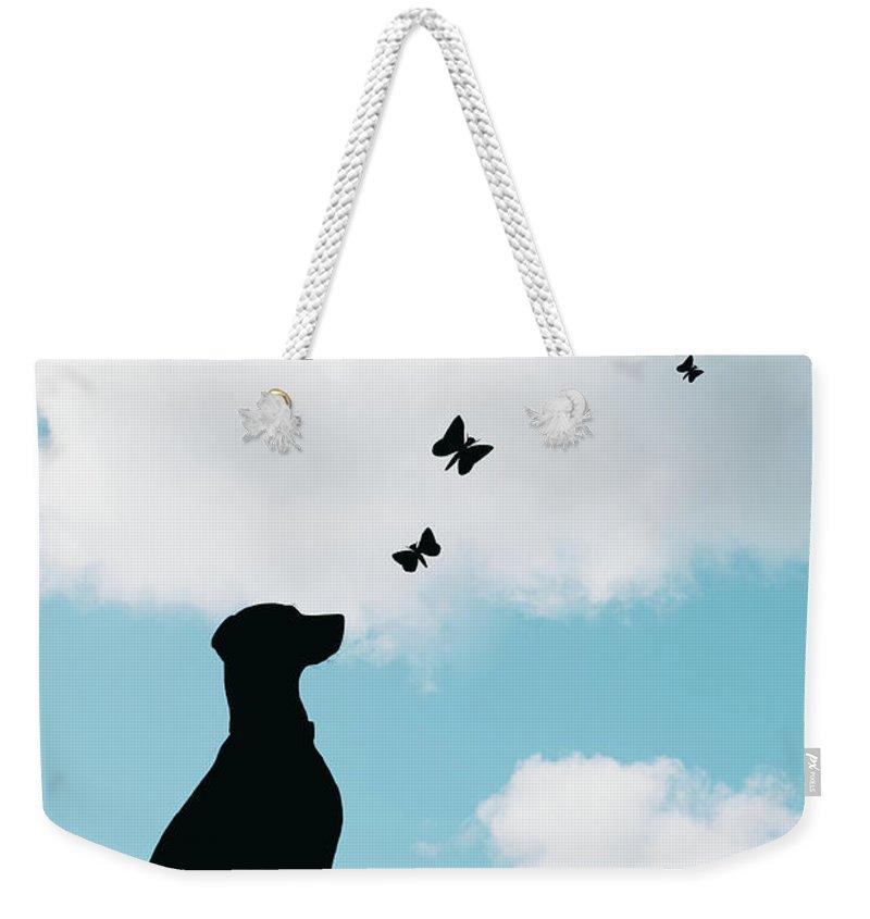 Dalmatian Weekender Tote Bag featuring the photograph Dalmatian Dog Silhouette by Amanda Elwell