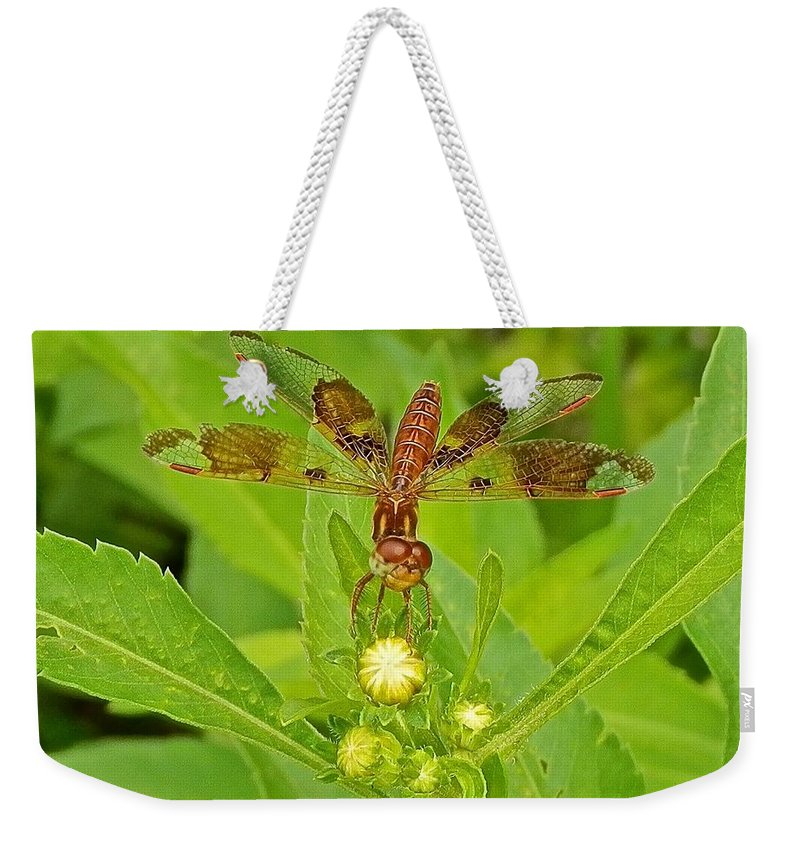 Damselfly Weekender Tote Bag featuring the photograph Dancing Dragonfly by Joe Wyman