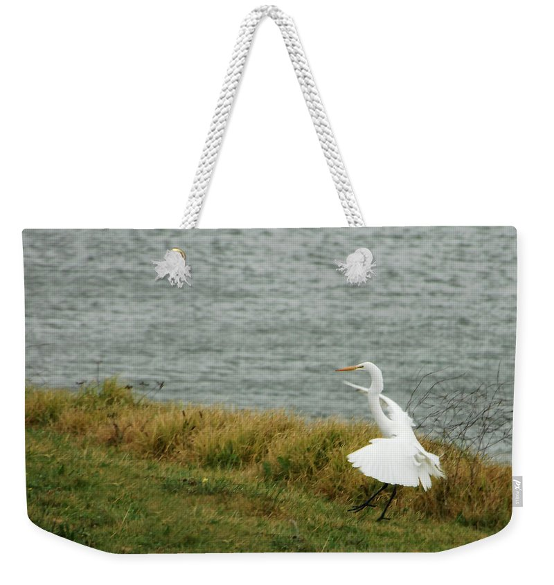 Egret Weekender Tote Bag featuring the photograph Dancing Egret by Donna Blackhall