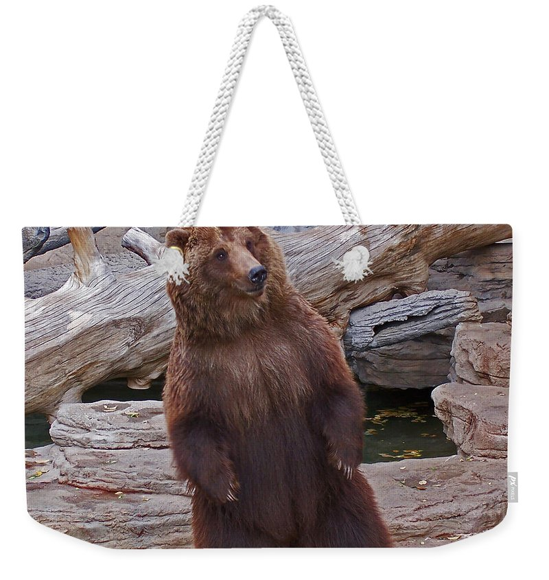 Animals Weekender Tote Bag featuring the photograph Dancing Grizzly by Ernie Echols
