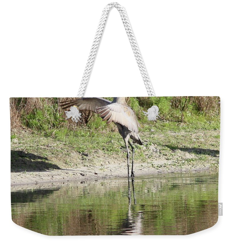 Bird Weekender Tote Bag featuring the photograph Dancing On The Pond by Carol Groenen