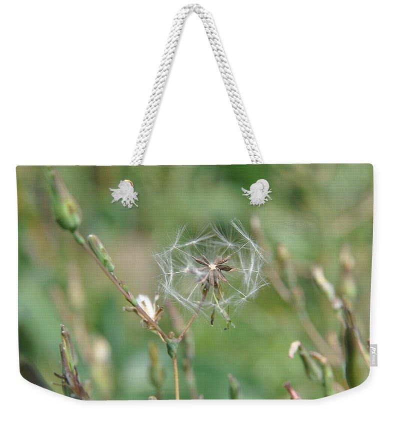 Macro Flower Weekender Tote Bag featuring the photograph Dandelion by Eduard Meinema