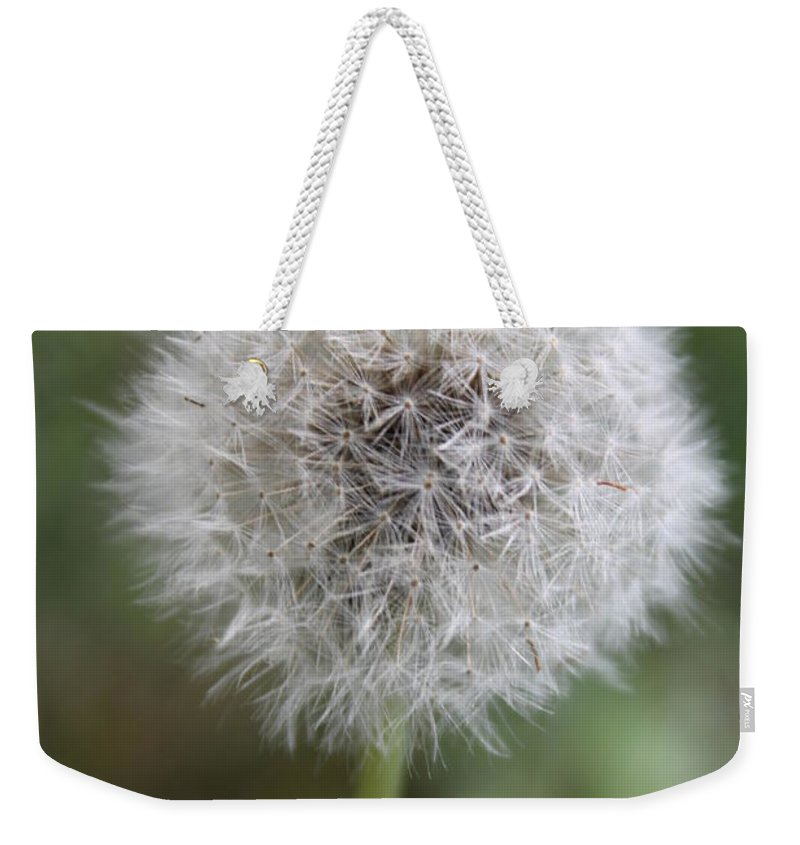 Dandelion Weekender Tote Bag featuring the photograph Dandelion by Lauri Novak