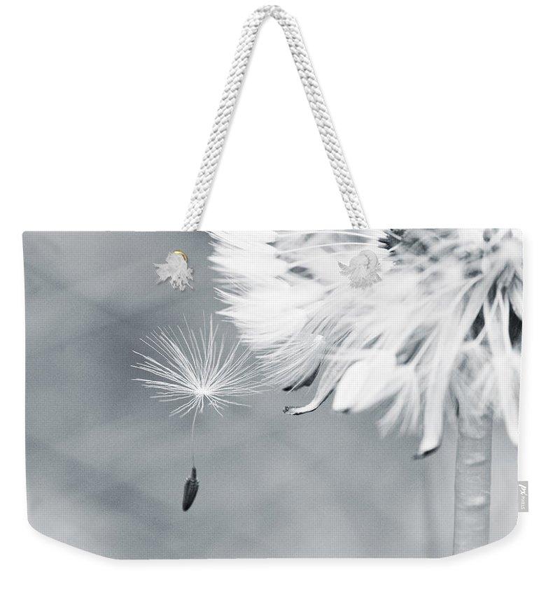 Dandelion Weekender Tote Bag featuring the photograph Dandelion Macro Make A Wish by Stephanie McDowell