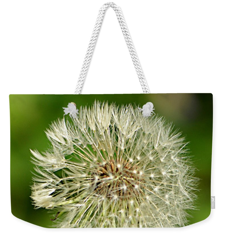 Dandelion Puff Weekender Tote Bag featuring the photograph Dandelion Puff by Ally White