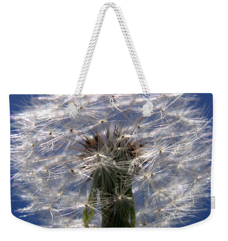 Dandelion Weekender Tote Bag featuring the photograph Dandelion by Ralph A Ledergerber-Photography