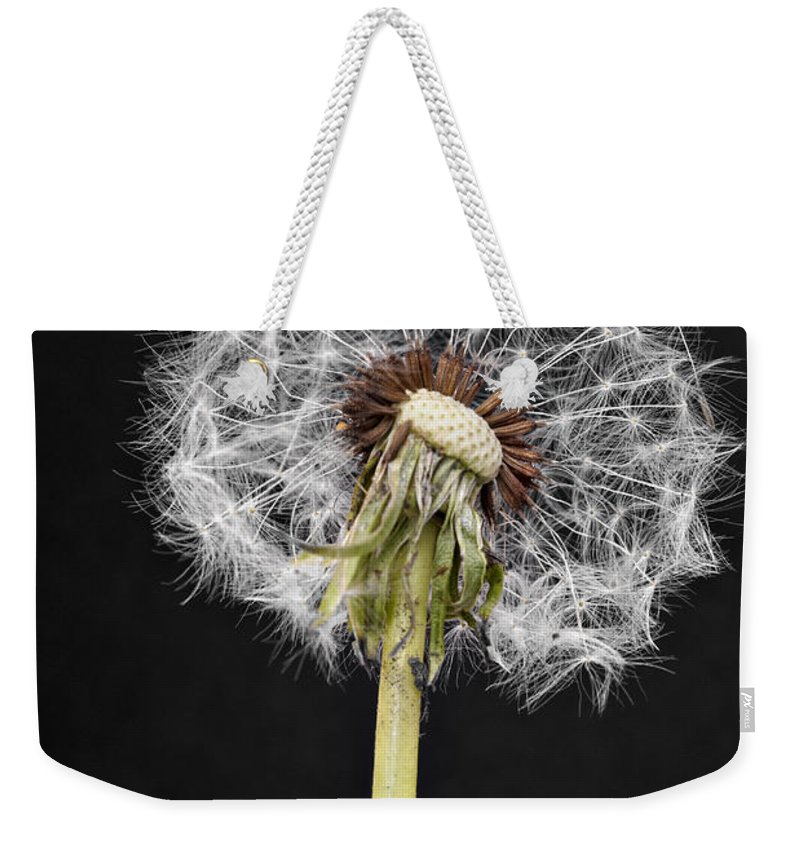 Donald Erickson Weekender Tote Bag featuring the photograph Dandelion Seed by Donald Erickson