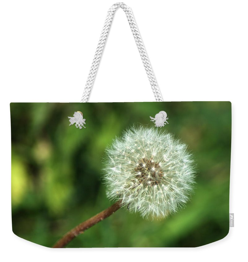 Dandelion Weekender Tote Bag featuring the photograph Dandelion Seed Head by Chris Day