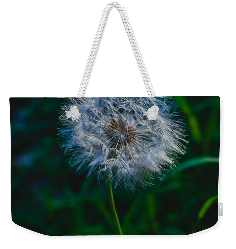 Dandelion Seeds Weekender Tote Bag featuring the photograph Dandelion Seeds 2 by Totto Ponce