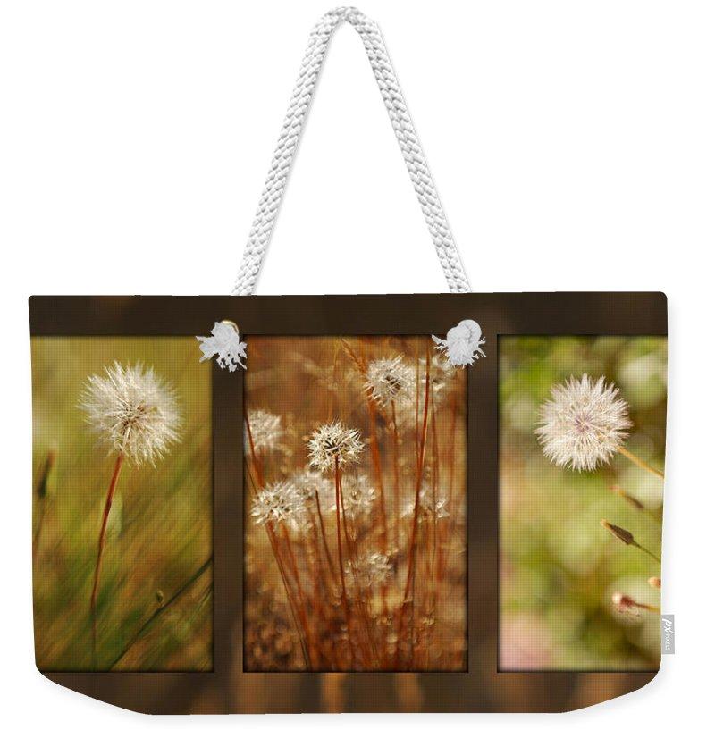Dandelions Weekender Tote Bag featuring the photograph Dandelion Series by Jill Reger