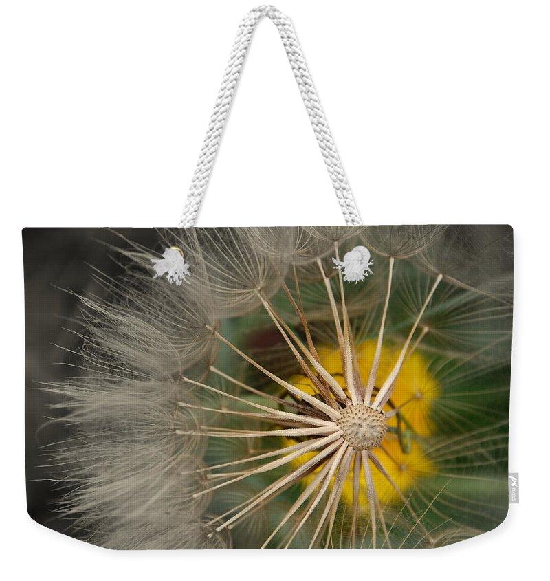 Dandelion Weekender Tote Bag featuring the photograph Dandelion by Susanne Van Hulst