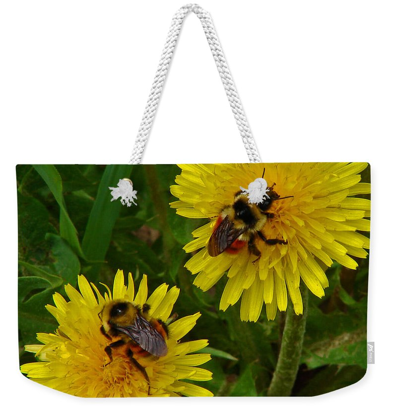 Dandelion Weekender Tote Bag featuring the photograph Dandelions And Bees by Heather Coen