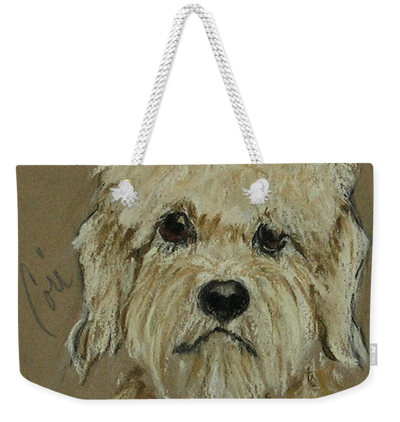 Dandie Dinmont Terrier Weekender Tote Bag featuring the drawing Dandie by Cori Solomon