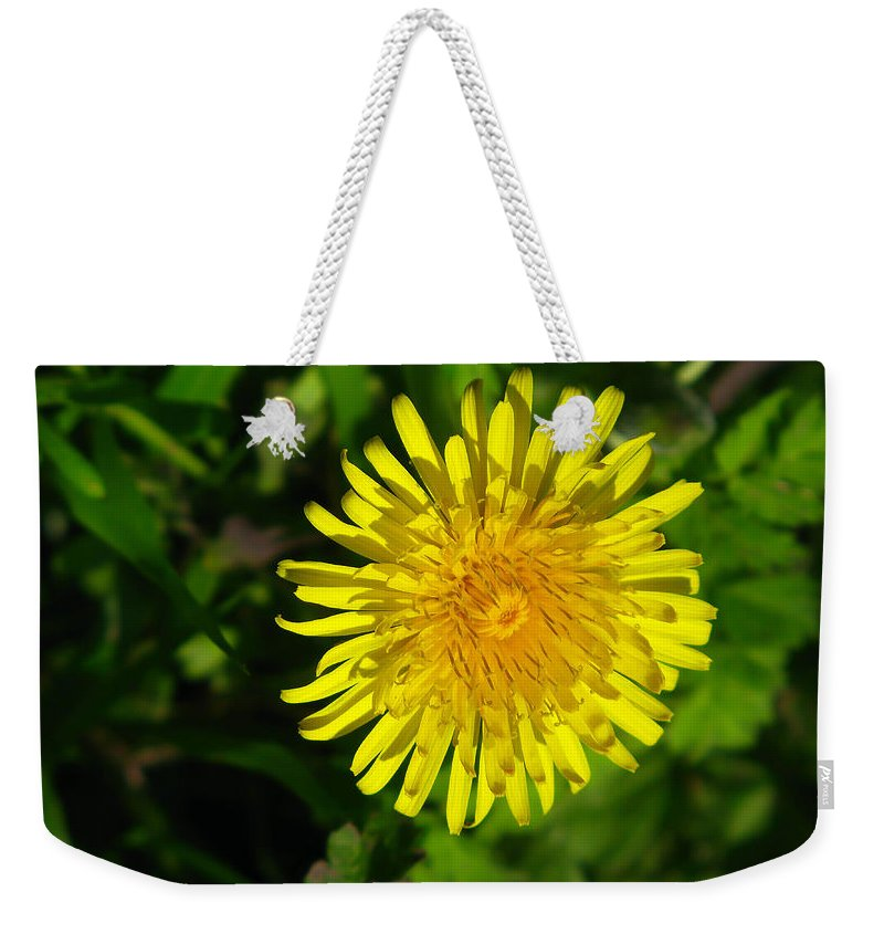 Yellow Weekender Tote Bag featuring the photograph Dandilion by Maria Joy