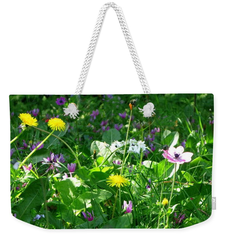 Dandilions Weekender Tote Bag featuring the photograph Dandilions by Maria Joy