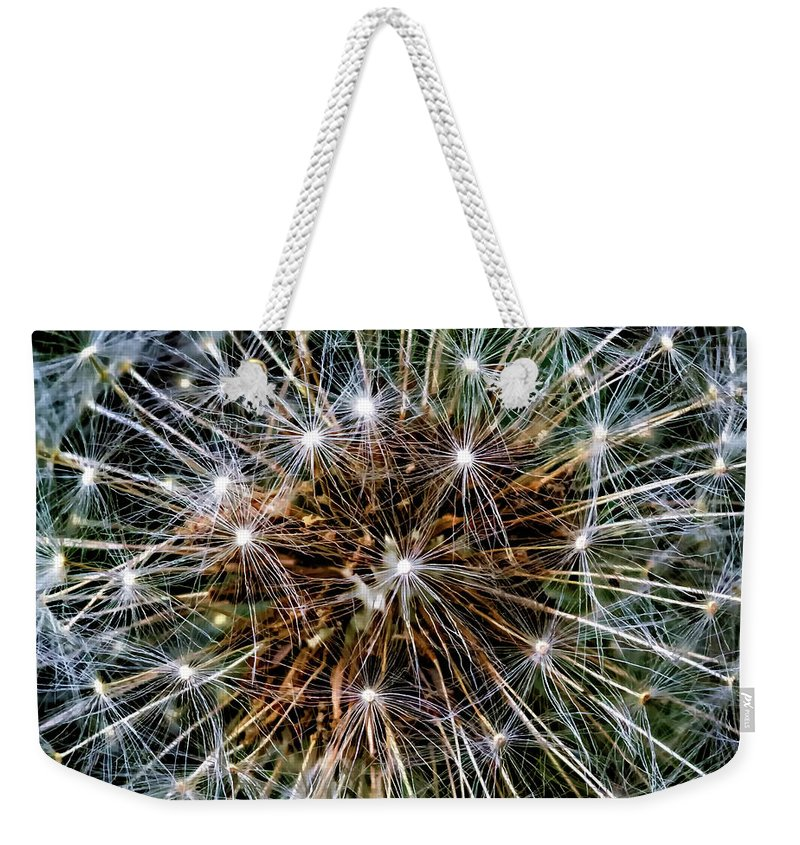 Flora Weekender Tote Bag featuring the photograph Dandy Universe by Steve Harrington