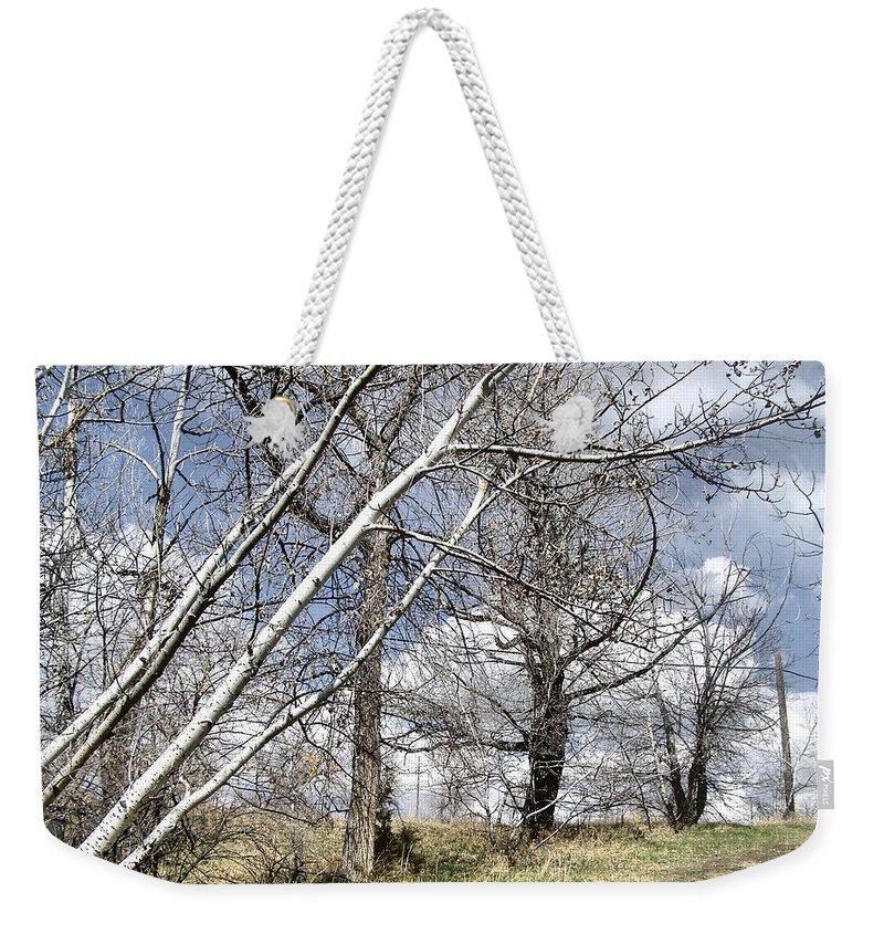 Montana Weekender Tote Bag featuring the photograph Dare To Be Different by Susan Kinney