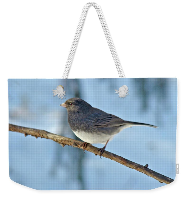 Junco Weekender Tote Bag featuring the photograph Dark-eyed Junco Or Snowbird - Junco Hyemalis by Mother Nature