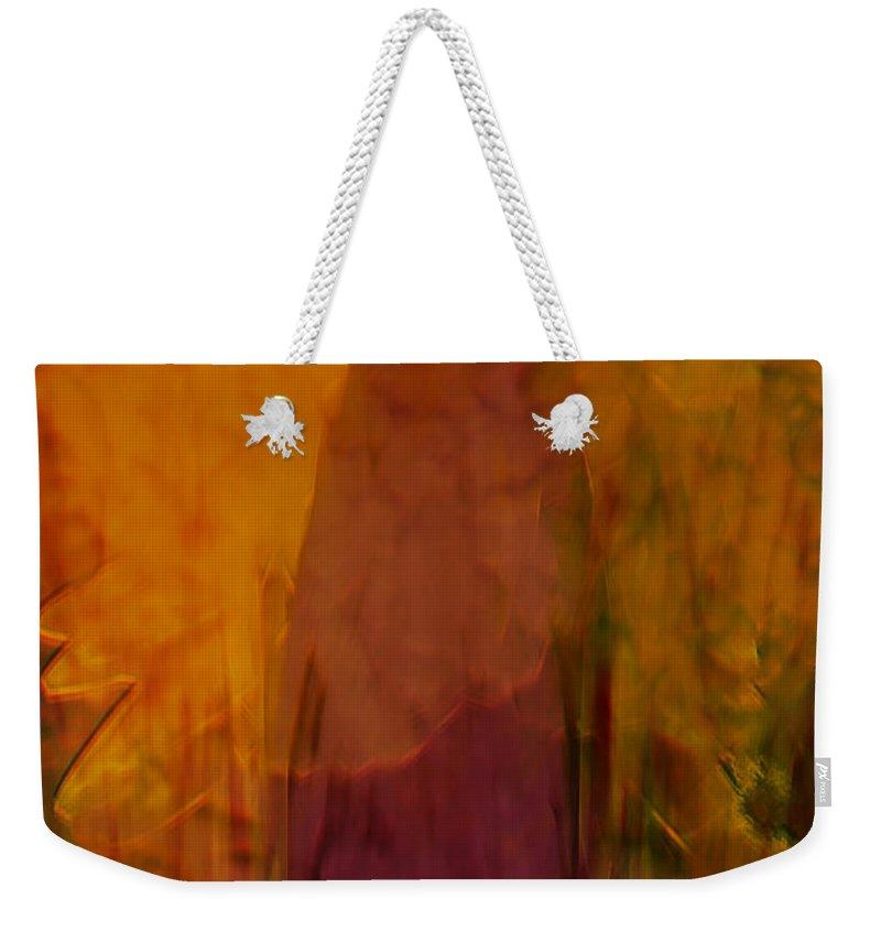 Abstract Art Weekender Tote Bag featuring the digital art Dark Shadow by Linda Sannuti