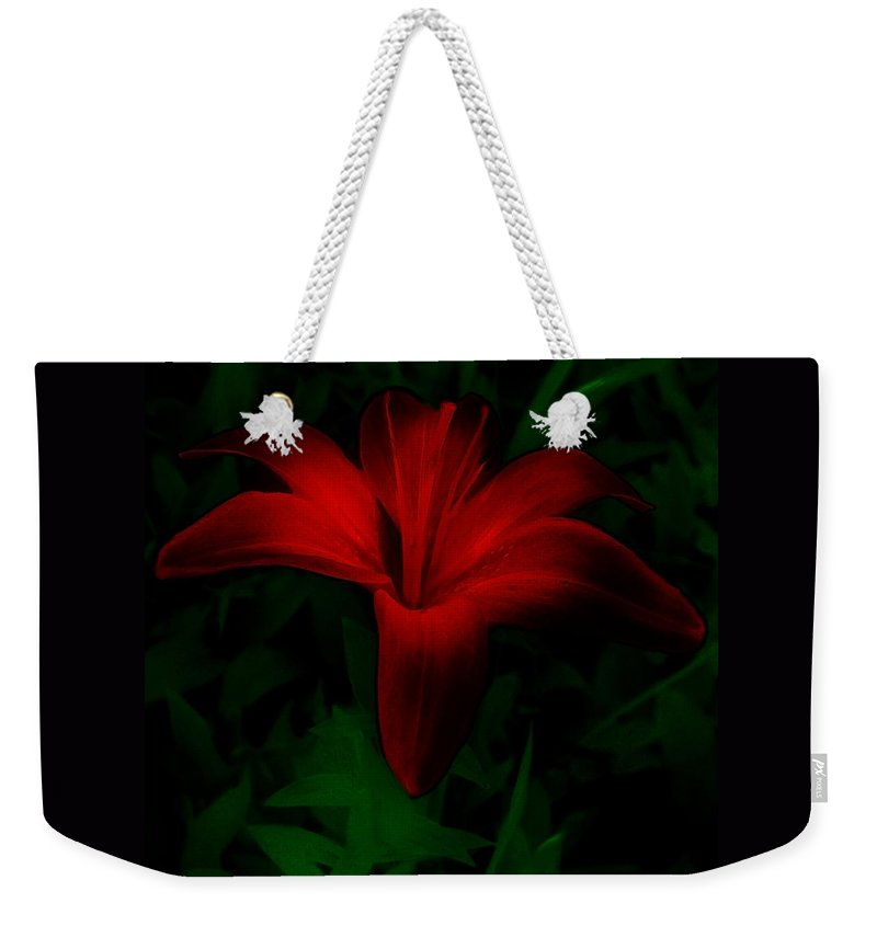 Lily Weekender Tote Bag featuring the painting Dark Star by RC DeWinter