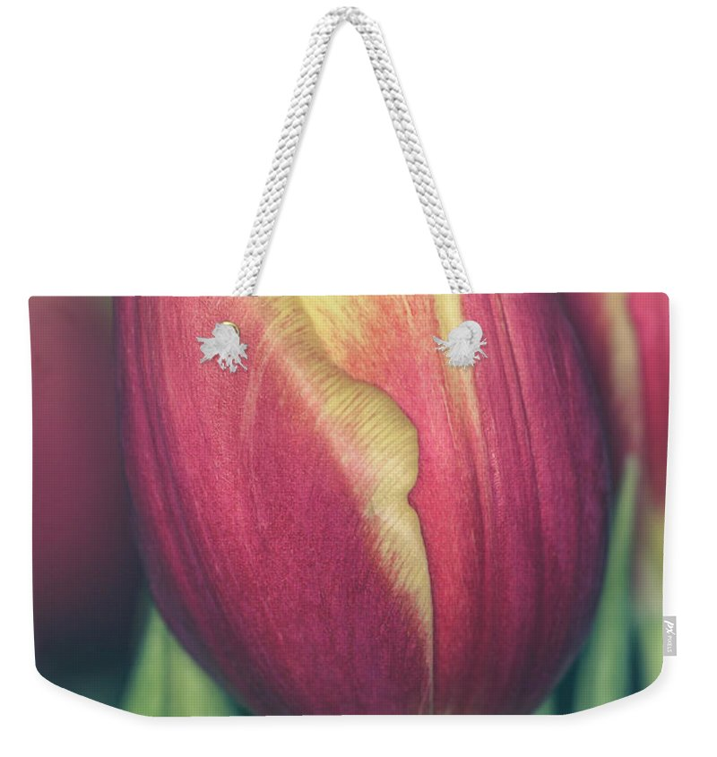 Isolated Weekender Tote Bag featuring the photograph Dash Of Delicate II by G Ben