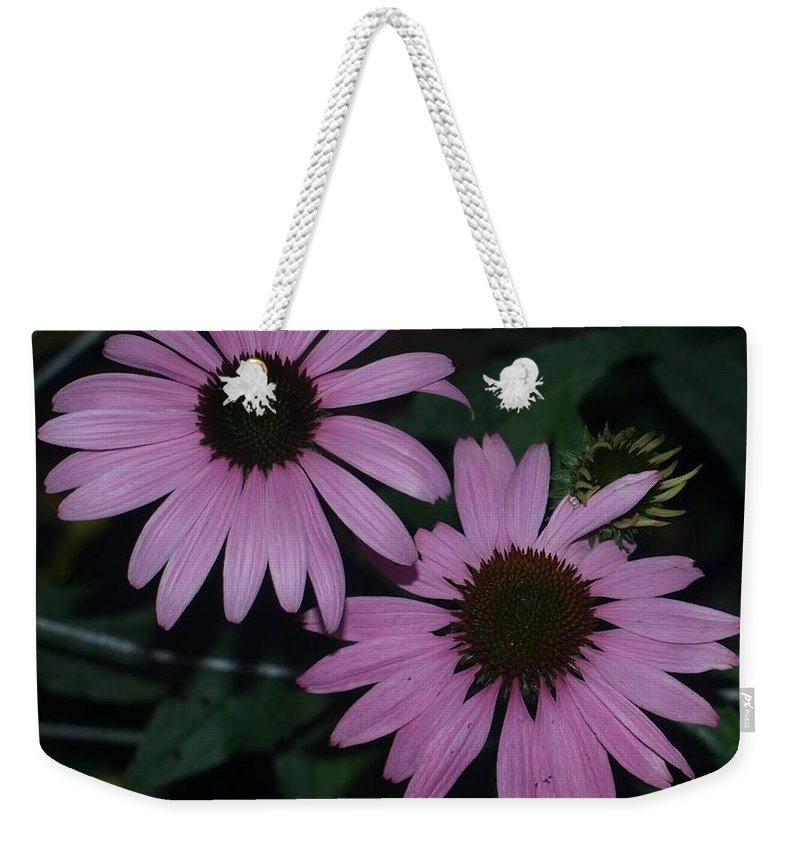 Purple Daisy Weekender Tote Bag featuring the photograph Dasiy by Susan Jenkins