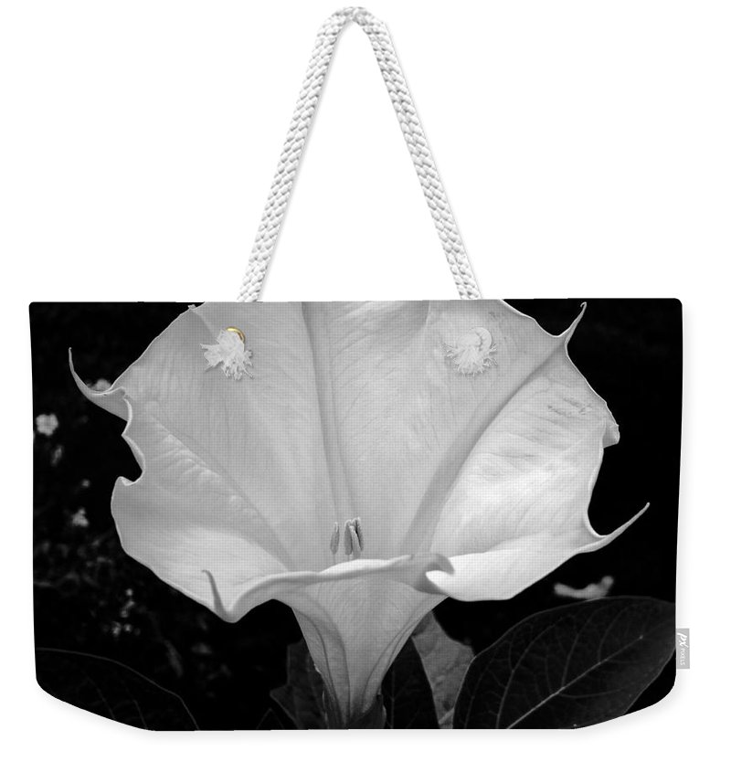 Datura Weekender Tote Bag featuring the photograph Datura-2 by Leanne Matson