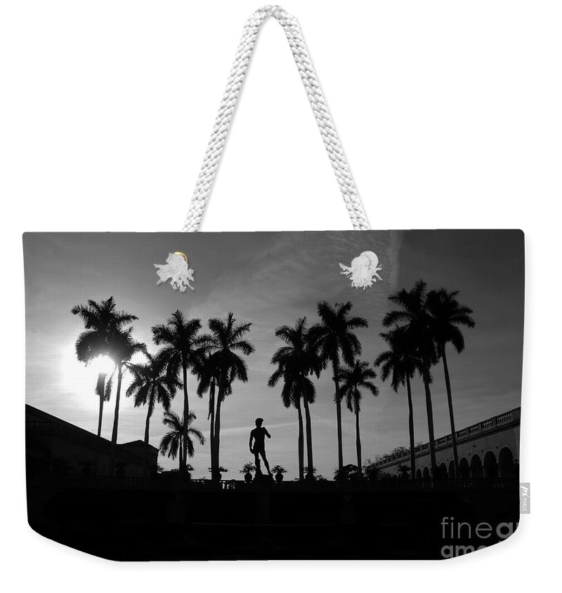 David Weekender Tote Bag featuring the photograph David With Palms by David Lee Thompson